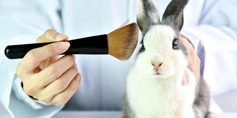 productos testados en animales